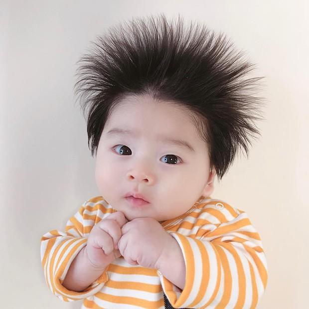 Cậu bé Hàn Quốc với quả đầu chôm chôm đáng yêu đến mức ai cũng muốn đem về nuôi - Ảnh 2.