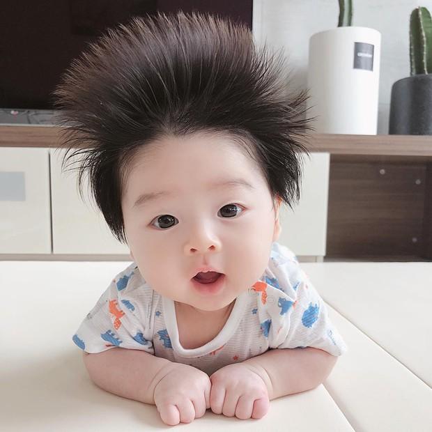 Cậu bé Hàn Quốc với quả đầu chôm chôm đáng yêu đến mức ai cũng muốn đem về nuôi - Ảnh 1.