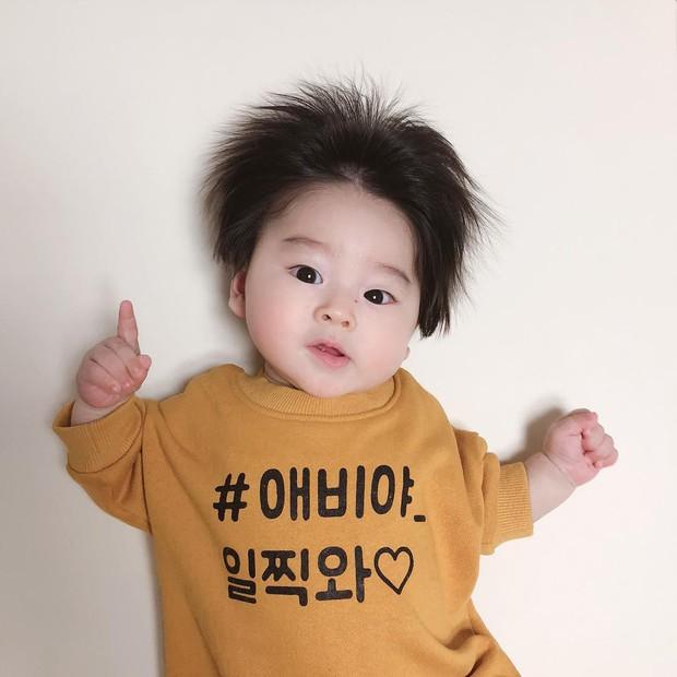 Cậu bé Hàn Quốc với quả đầu chôm chôm đáng yêu đến mức ai cũng muốn đem về nuôi - Ảnh 10.