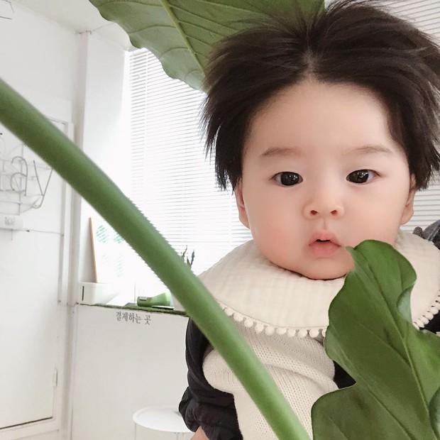 Cậu bé Hàn Quốc với quả đầu chôm chôm đáng yêu đến mức ai cũng muốn đem về nuôi - Ảnh 5.