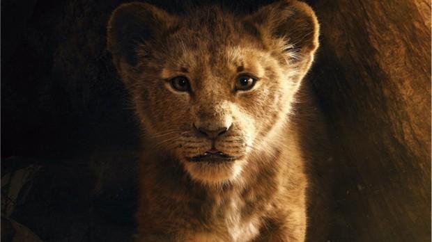 Tại sao The Lion King chẳng có lấy một mống người nhưng vẫn được gọi là phim live-action? - Ảnh 2.