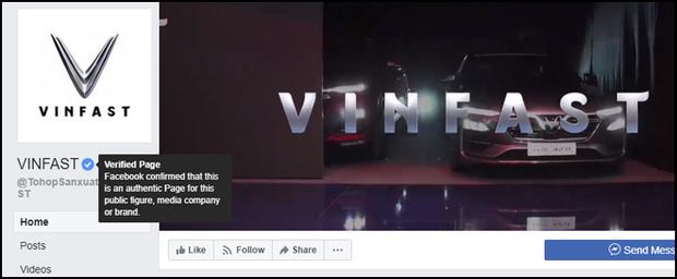Lừa share Fanpage để nhận xe Vinfast miễn phí, hàng nghìn cư dân mạng Facebook sập bẫy tin sái cổ - Ảnh 3.