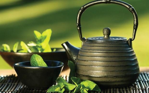 Tập luyện, ăn kiêng mãi mà chẳng giảm cân: Lý do là bạn chưa biết đến liệu pháp detox bằng trà cực hiệu quả này! - Ảnh 7.