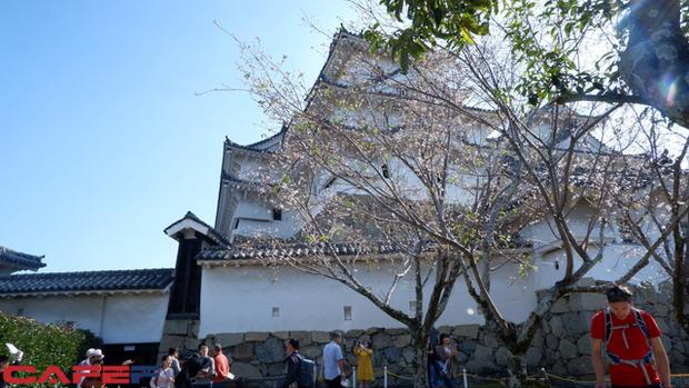 Himeji - Lâu đài hạc trắng không thể bỏ qua khi du lịch đến Nhật Bản - Ảnh 4.