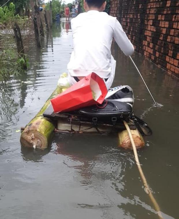 Sài Gòn sau bão số 9: Phố đi bộ thành phố bơi lội, nhà dân hoá bể sinh vật cảnh với đủ loại cá, gián và rắn rết - Ảnh 3.