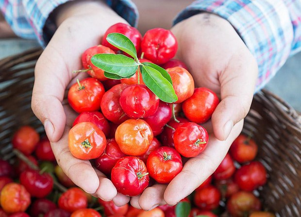 Ở Việt Nam có 1 loại quả rất rẻ được phương Tây xem là thần dược vì công dụng giữ dáng, đẹp da - Ảnh 1.