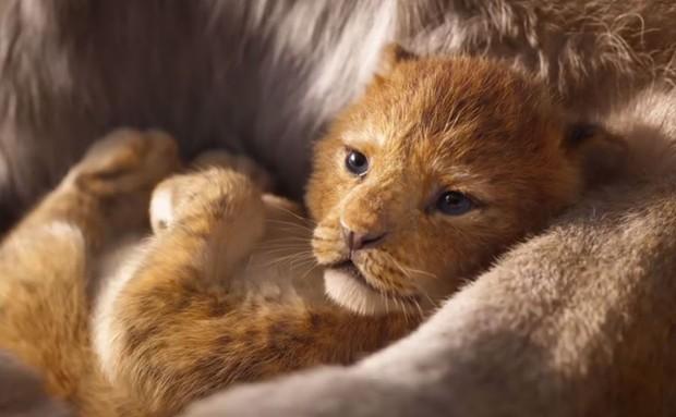 Làm lại The Lion King và loạt phim kinh điển, liệu Disney có đi vào lối mòn sáng tạo? - Ảnh 1.
