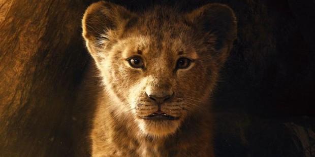 6 câu hỏi mà fan không thể không thắc mắc ở The Lion King bản remake - Ảnh 5.