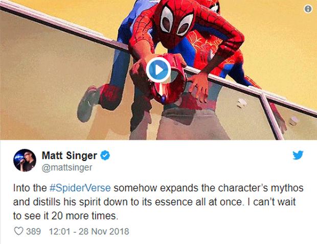 Đạt điểm tuyệt đối trên Rotten Tomatoes, Spider-Man: Into the Spider-Verse trở thành phim Người Nhện được đánh giá cao nhất trong lịch sử - Ảnh 8.