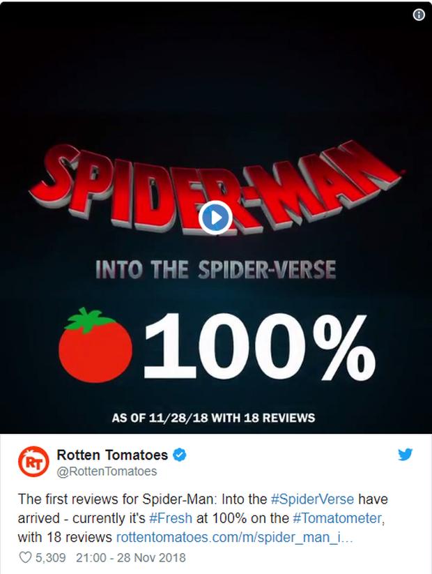Đạt điểm tuyệt đối trên Rotten Tomatoes, Spider-Man: Into the Spider-Verse trở thành phim Người Nhện được đánh giá cao nhất trong lịch sử - Ảnh 2.
