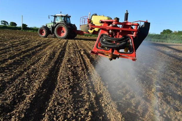 Hàng chục nông dân bị ngộ độc, Pháp cấm vĩnh viễn thuốc trừ sâu chứa metam sodium - Ảnh 1.