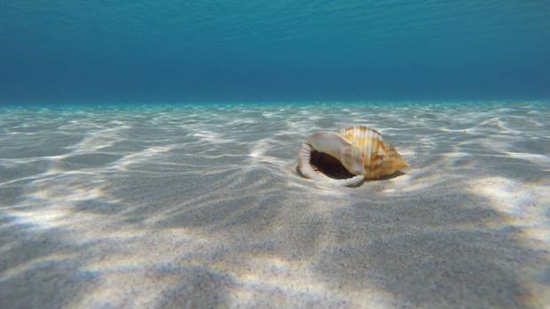 Đáy biển trên các đại dương có nguy cơ tan chảy theo đúng nghĩa đen luôn và lý do là gì? - Ảnh 2.