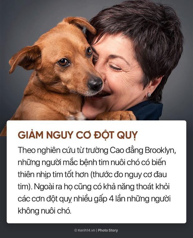 Nuôi cún cưng không chỉ giúp bạn vui vẻ mà còn chống lại rất nhiều bệnh tật - Ảnh 9.