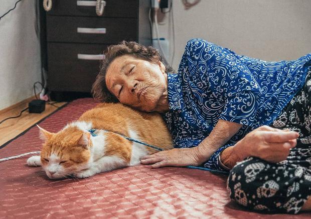 Bộ ảnh đầy xúc cảm của cụ bà Hàn Quốc: Tuổi già chẳng cần gì cả, chỉ cần một chú mèo cùng bầu bạn mà thôi - Ảnh 8.