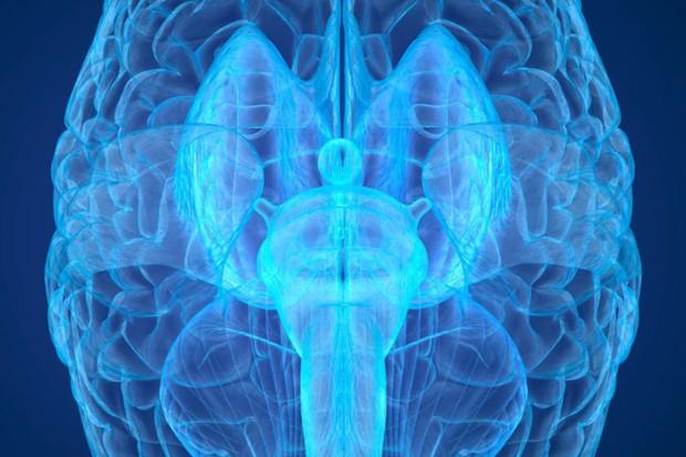 Khoa học Trung Quốc lên kế hoạch săn tìm linh hồn bằng công nghệ quét não mạnh nhất lịch sử loài người - Ảnh 1.