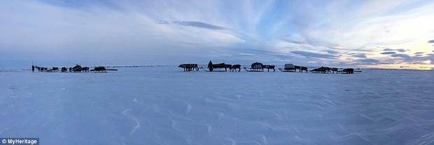 Những khoảnh khắc đời thường của Nenets: Bộ lạc du mục chuyên ăn thịt sống, uống máu tuần lộc - Ảnh 5.