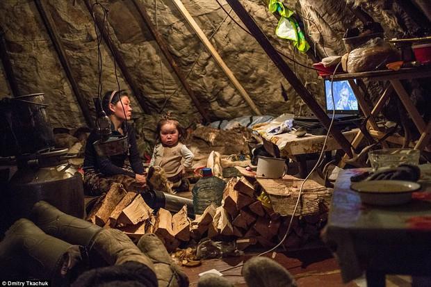 Những khoảnh khắc đời thường của Nenets: Bộ lạc du mục chuyên ăn thịt sống, uống máu tuần lộc - Ảnh 10.