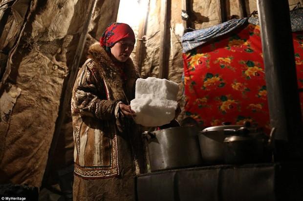 Những khoảnh khắc đời thường của Nenets: Bộ lạc du mục chuyên ăn thịt sống, uống máu tuần lộc - Ảnh 14.