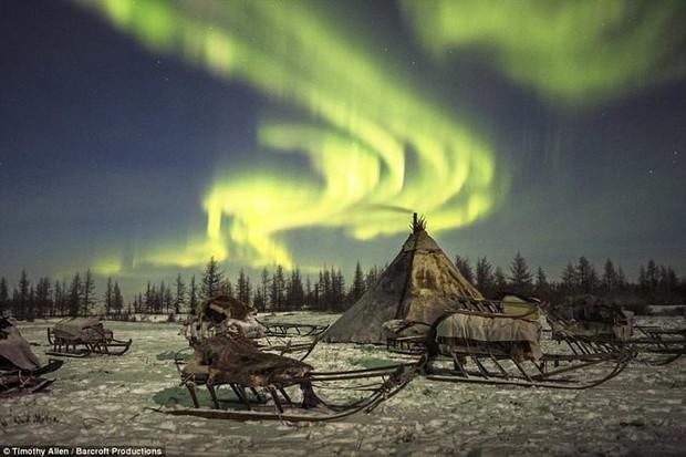 Những khoảnh khắc đời thường của Nenets: Bộ lạc du mục chuyên ăn thịt sống, uống máu tuần lộc - Ảnh 15.