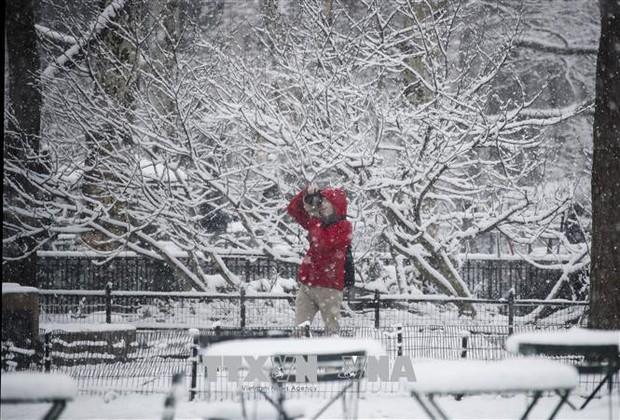 Bão tuyết đổ vào Đông Nam nước Mỹ, 3 người thiệt mạng  - Ảnh 1.