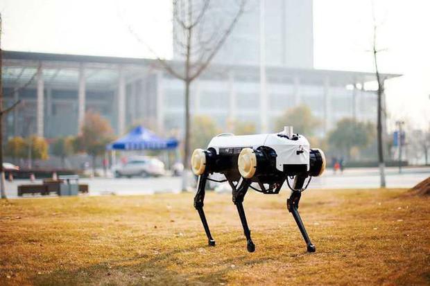 Trung Quốc cái gì cũng làm được, kể cả phiên bản y hệt như robot chó SpotMini của Boston Dynamics - Ảnh 1.