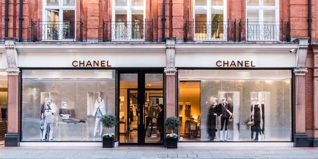 Chanel chính thức tuyên bố ngừng sử dụng lông và da động vật hoang dã - Ảnh 1.