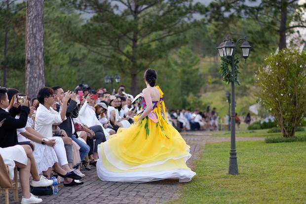NTK khẳng định Nam Em tự ý cởi giày, đi chân trần và nhảy múa trong show diễn - Ảnh 4.