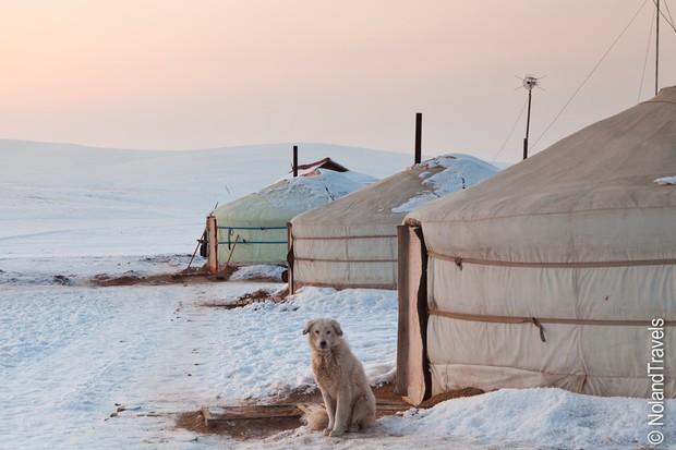 Những nơi lạnh dưới -50 độ C vẫn có người sinh sống - Ảnh 6.