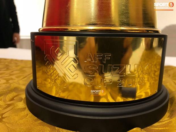 Vô địch, nhưng Tuyển Việt Nam chỉ được nhận bản mini của cúp vàng AFF Cup - Ảnh 3.