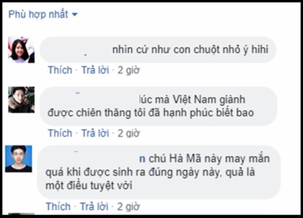 Cùng ngày Đội tuyển Việt Nam vô địch AFF Cup 2018, có một nhà vô địch nữa cũng mới chào đời - Ảnh 2.