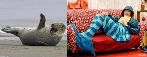Giáng sinh này, mua chăn Tiên cá để hiểu vì sao nàng Tiên cá lại cố sống cố chết đòi đổi chân người - Ảnh 10.