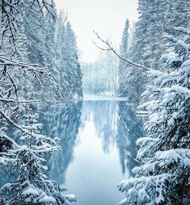 Những bức ảnh chứng minh khu rừng cổ tích ở Phần Lan là có thật - Ảnh 11.