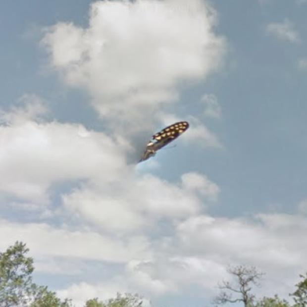 Sự thật về ảnh UFO hiện ra gần khu vực Tam giác Bermuda đang gây xôn xao cư dân mạng Mỹ - Ảnh 2.