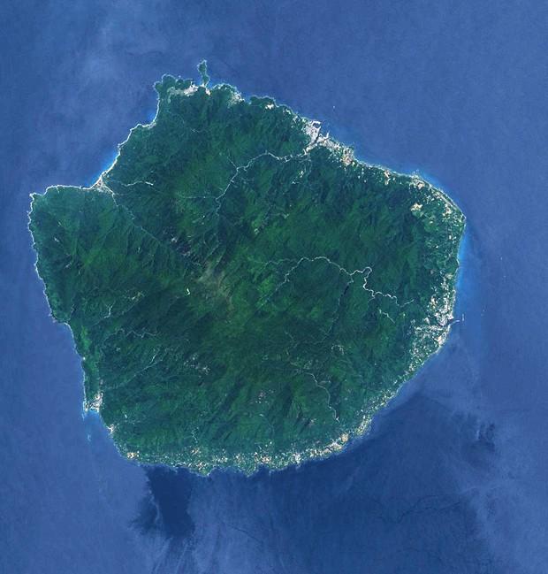 Mãn nhãn với khu rừng cổ tích đẹp lộng lẫy trên hòn đảo mưa không nghỉ ở Nhật Bản - Ảnh 1.
