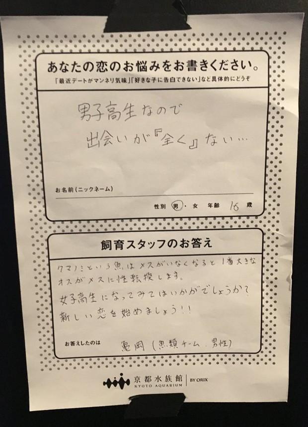 Lời khuyên đang gây bão MXH Nhật: Học ở trường toàn con trai mà muốn có gấu thì phải làm gì? - Ảnh 2.