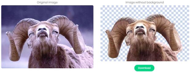 Tách nền xóa phông pro như chuyên gia Photoshop với website miễn phí này - Ảnh 3.