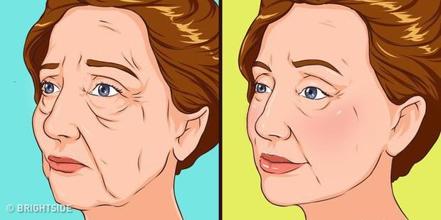 Đây là những triệu chứng tố cáo bạn đang già nhanh trước tuổi, cái số 3 dành riêng cho hội não cá vàng - Ảnh 1.