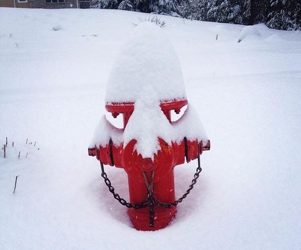 Chùm ảnh rét run: Băng tuyết chỉ lãng mạn trên phim, thực tế lại lạnh lẽo buốt giá như thế này - Ảnh 12.