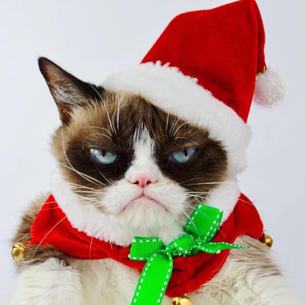 Chùm ảnh: Gương mặt chán nản đến tột cùng của các boss khi bị sen bắt cùng đón Giáng sinh - Ảnh 4.