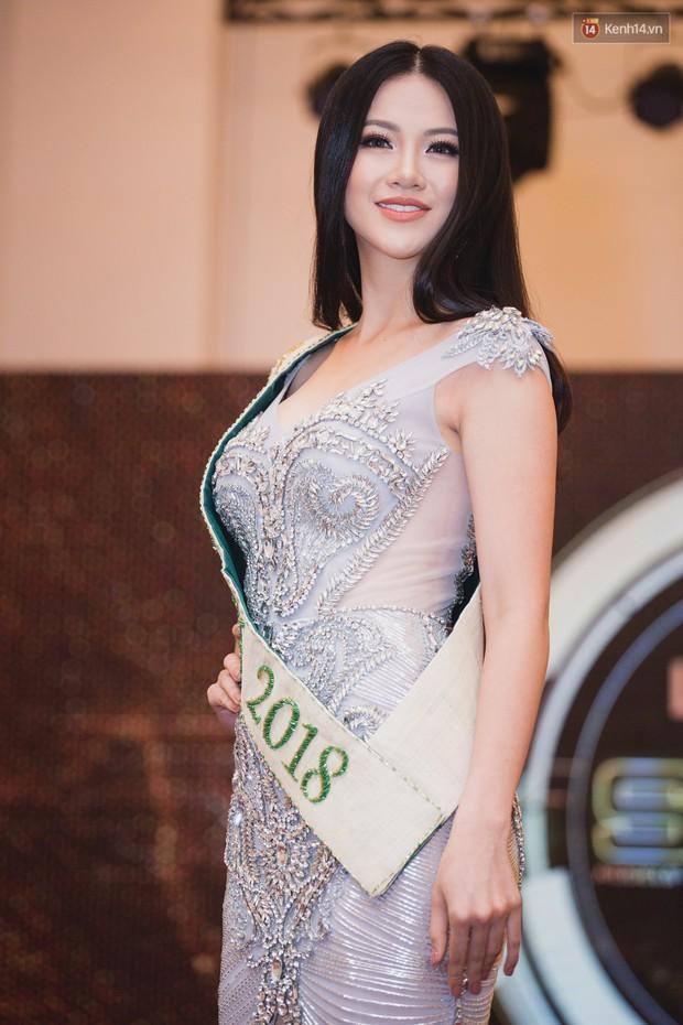 Tổng kết mùa Hoa hậu năm 2018: Những lời nguyền out top bị phá bỏ, nhan sắc Việt thăng hạng đáng tự hào! - Ảnh 6.
