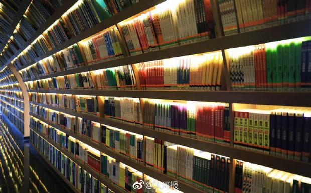 Choáng ngợp thư viện trường ĐH 57 tỷ, rộng 20.000 m2 được xây theo phong cách thuỷ cung - Ảnh 4.