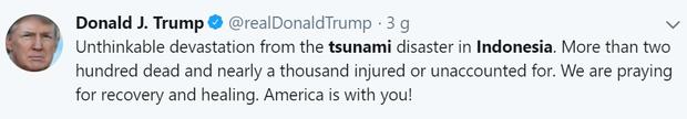 Tổng thống Mỹ, Thủ tướng Canada và nhiều người nổi tiếng bàng hoàng trước thảm họa sóng thần tại Indonesia - Ảnh 2.