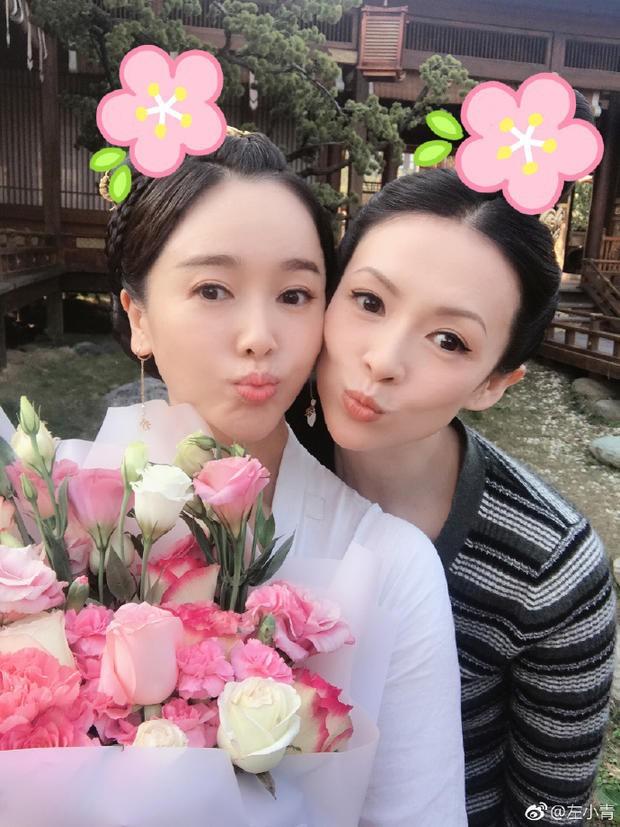 Năm 2019: Bộ ba bóng hồng Lưu Diệc Phi, Dương Mịch, Chương Tử Di hứa hẹn đại náo truyền hình Hoa Ngữ - Ảnh 6.