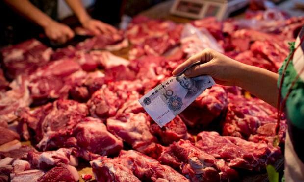 Giáo sư Mỹ: Dù cả thế giới ngưng ăn thịt cũng không giúp được gì cho Trái đất đâu - Ảnh 6.