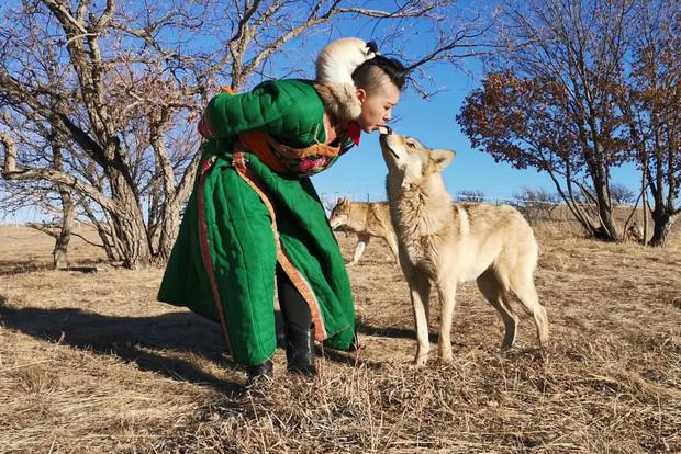 Cô gái Mông Cổ với dàn pet độc 8 con sói, 3 bạn trai đều đòi chia tay vì sợ cãi nàng sẽ bị ăn thịt - Ảnh 1.
