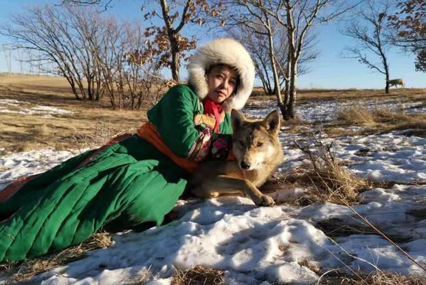 Cô gái Mông Cổ với dàn pet độc 8 con sói, 3 bạn trai đều đòi chia tay vì sợ cãi nàng sẽ bị ăn thịt - Ảnh 6.