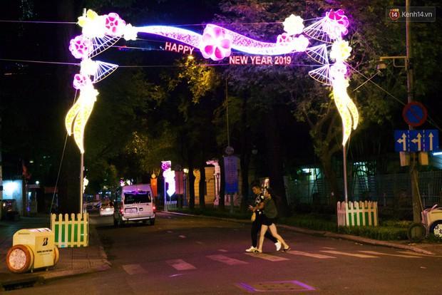 Chùm ảnh: Đường phố trung tâm Sài Gòn được trang trí ánh sáng lung linh để chào đón năm mới 2019 - Ảnh 7.