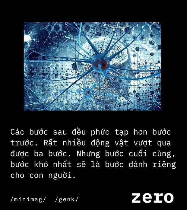 Số 0 - phát minh vĩ đại của nhân loại, đến não bộ con người cũng không hiểu hết - Ảnh 11.