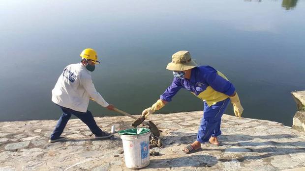 Nguyên nhân cá chết hàng loạt ở Nghệ An là do hồ điều hòa bị ô nhiễm - Ảnh 1.