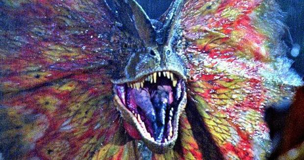 Ừ thì chất chơi và nổi bật đấy, mà sao càng nhìn bộ cánh này của HHen Niê càng liên tưởng đến... Thế giới động vật - Ảnh 8.